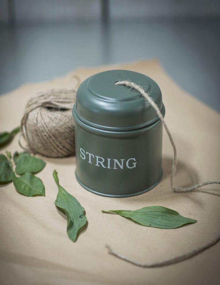 string_dispenser__thyme__sdty01